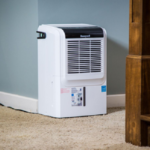 Best Dehumidifier For Basement Canada Reviews 2020